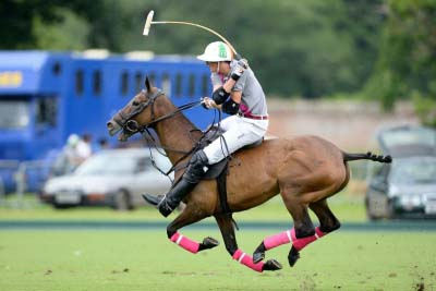 Visa issue creating changes in English polo